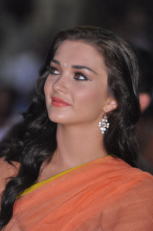 amy-jackson-hot-stills-in-transparant-saree-10