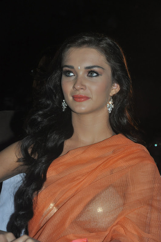 amy-jackson-hot-stills-in-transparant-saree-3_0