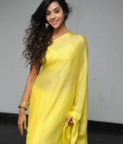 anu-priya-saree-stills-at-potugadu-audio-launch-10