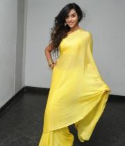 anu-priya-saree-stills-at-potugadu-audio-launch-11