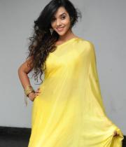 anu-priya-saree-stills-at-potugadu-audio-launch-12