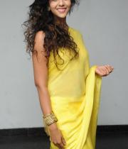 anu-priya-saree-stills-at-potugadu-audio-launch-14