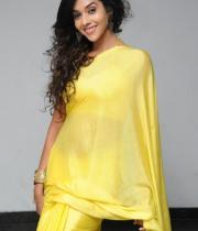 anu-priya-saree-stills-at-potugadu-audio-launch-15
