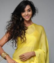 anu-priya-saree-stills-at-potugadu-audio-launch-18