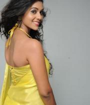 anu-priya-saree-stills-at-potugadu-audio-launch-20