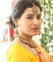 archana-beautiful-saree-photos7