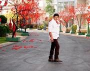 srimannarayana-latest-movie-stills-12
