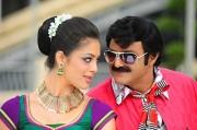 srimannarayana-latest-movie-stills-9