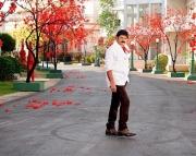 srimannarayana-movie-latest-photos-1160