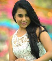 bhumika-chabria-hot-stills-07