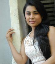 bhumika-chabria-hot-stills-13