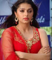 bhumika-chawla-latest-photo-gallery-12