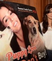 raveena-tandon-at-petas-dog-adoption-campaign-launch-clips-3