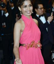 actress-freida-pinto-attends-the-opening-ceremony-and-the-great-gatsby-premiere130516113822
