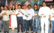 brothers-maatran-telugu-audio-release-photos-04