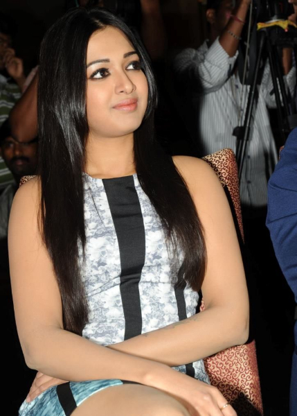 catherine-tresa-photos-at-iddarammayilatho-platinum-disc-1