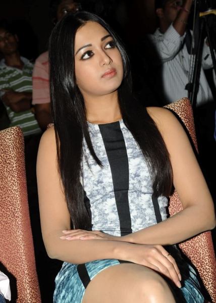 catherine-tresa-photos-at-iddarammayilatho-platinum-disc-19