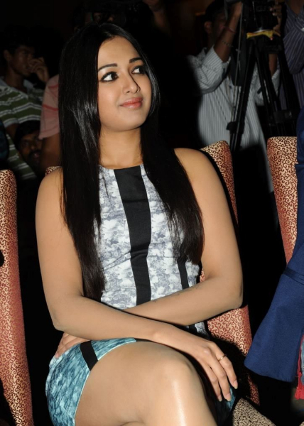 catherine-tresa-photos-at-iddarammayilatho-platinum-disc-20