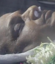 avs-dead-body-photos-9