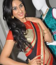 deepti-sati-saree-navel-show-stills-1