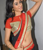 deepti-sati-saree-navel-show-stills-12