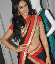 deepti-sati-saree-navel-show-stills-19