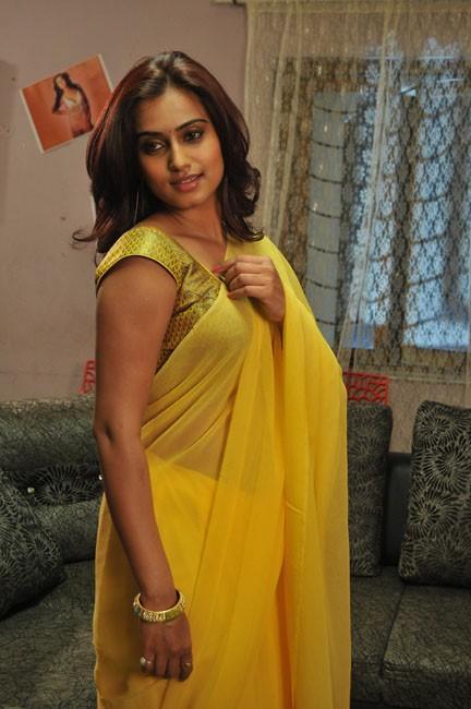 romance-fame-dimple-hot-saree-pics-2