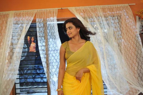 romance-fame-dimple-hot-saree-pics-3