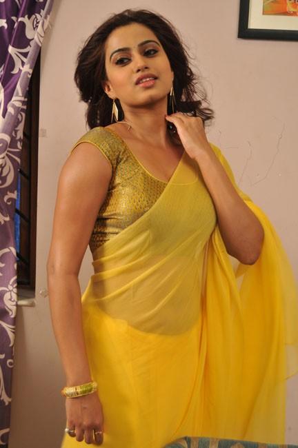 romance-fame-dimple-hot-saree-pics-4