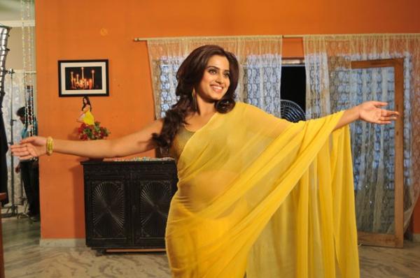 romance-fame-dimple-hot-saree-pics-6