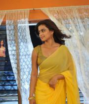 romance-fame-dimple-hot-saree-pics-3