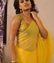 romance-fame-dimple-hot-saree-pics-4