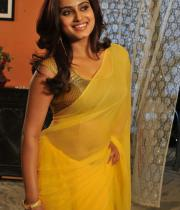 romance-fame-dimple-hot-saree-pics-5