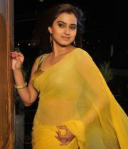 romance-fame-dimple-hot-saree-pics-8