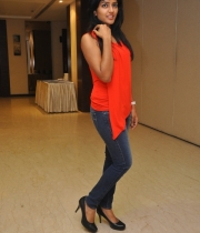 esha-photos-at-amat-movie-success-meet-10