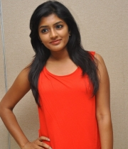 esha-photos-at-amat-movie-success-meet-13
