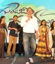 gunde-jaari-gallanthayyinde-audio-launch-photos-03
