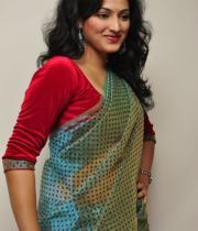 haripriya-saree-stills-at-acam-platinum-disc-1