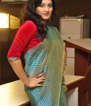 haripriya-saree-stills-at-acam-platinum-disc-10