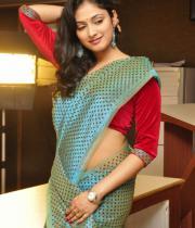 haripriya-saree-stills-at-acam-platinum-disc-11