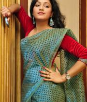 haripriya-saree-stills-at-acam-platinum-disc-12