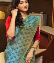 haripriya-saree-stills-at-acam-platinum-disc-14