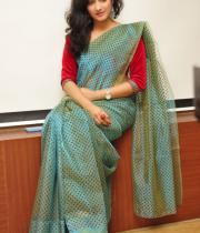 haripriya-saree-stills-at-acam-platinum-disc-16