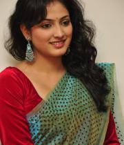haripriya-saree-stills-at-acam-platinum-disc-4