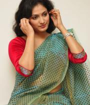 haripriya-saree-stills-at-acam-platinum-disc-5