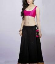 richa-panai-latest-hot-photoshoot-stills-05