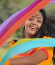 intinta-annamayya-movie-new-stills7