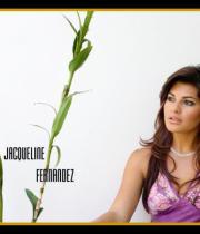 jacqueline-fernandez-hot-wallpapers-06
