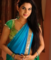 kavya-singh-latest-saree-photos-17