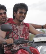 kedi-billa-killadi-ranga-movie-stills-8